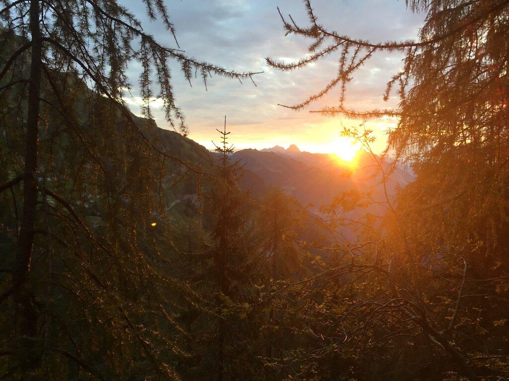 18.08.2018 Die Morgensonne in ihrer ganzen Schönheit