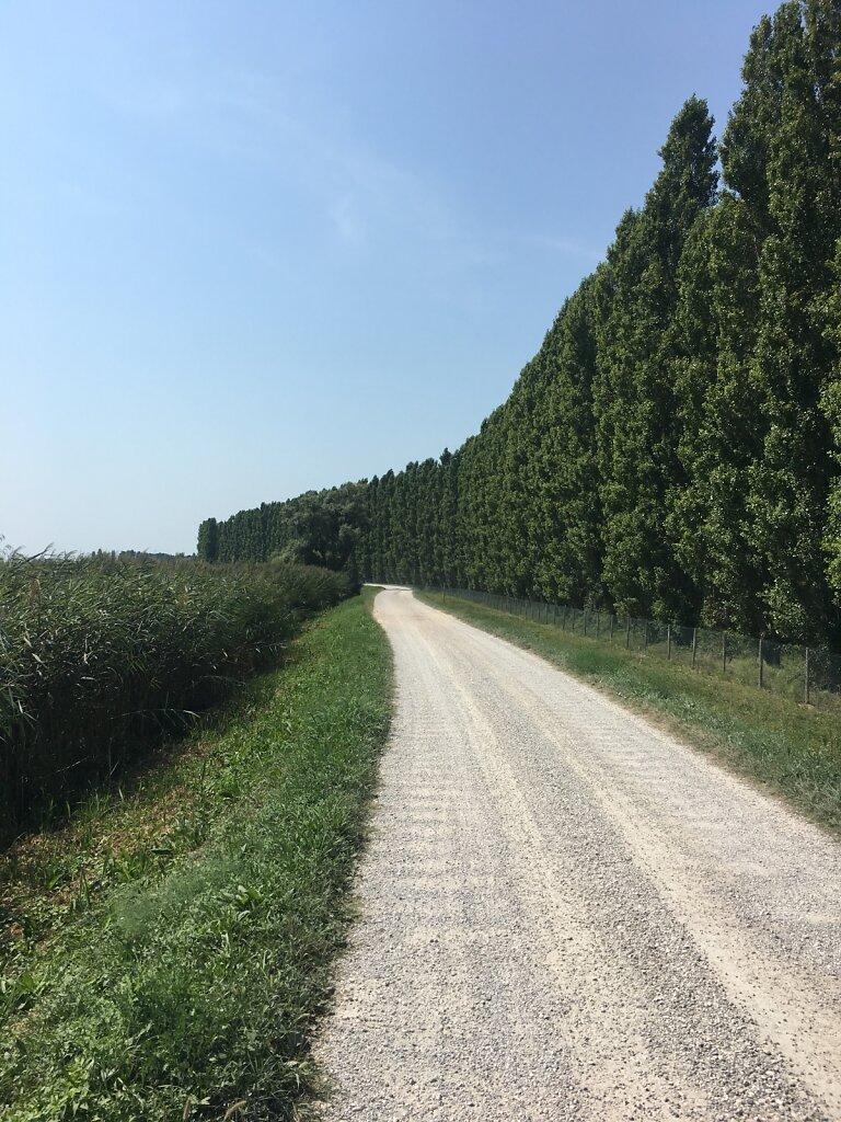 23.08.2018 In der Hitze Richtung Cavallino